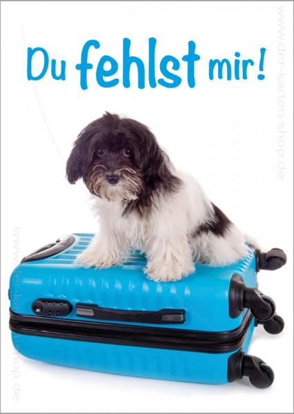 Postkarte Grußkarte kleiner Hund sitzt auf Reisekoffer 'Du fehlst mir!'