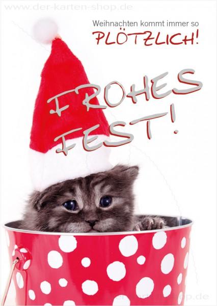 Postkarte Weihnachtskarte Katzenbaby 'Weihnachten kommt immer so plötzlich'