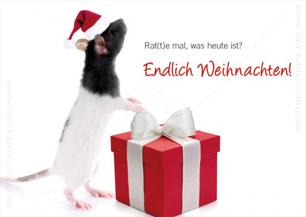 Postkarte Weihnachtskarte süße Ratte 'Rat(t)e mal, was heute ist...'
