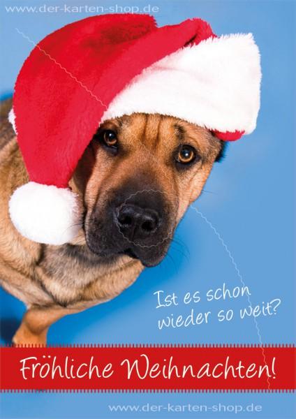 Doppelkarte Weihnachtskarte lustiger Faltenhund 'Ist es schon wieder so weit?'