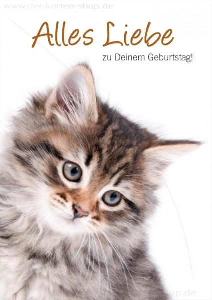 Doppelkarte Geburtstagskarte Gluckwunschkarte Katze Alles Liebe Zu