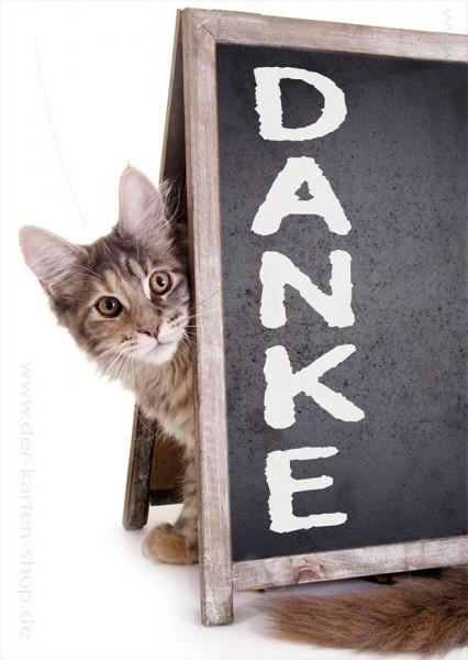 Postkarte Grußkarte Dankeskarte süße Katze mit Schild 'Danke'