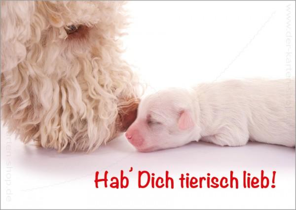 Postkarte Grußkarte Hund mit Welpe 'Hab Dich tierisch lieb!'