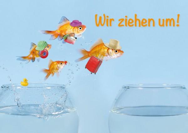 Postkarte Umzugskarte Goldfische 'Wir ziehen um!'