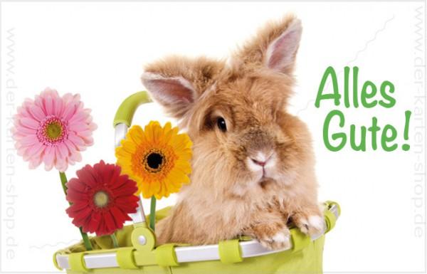 Minikarte Glückwunschkarte Kaninchen im Korb 'Alles Gute'