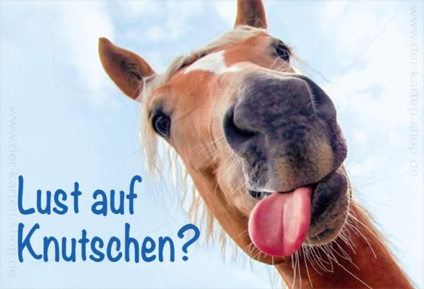 Magnet Kühlschrankmagnet Pferd mit Zuge 'Lust auf Knutschen?'