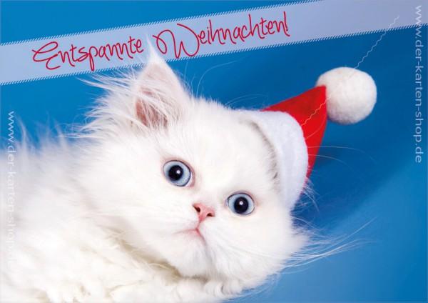 Doppelkarte Weihnachtskarte süße weiße Katze 'Entspannte Weihnachten'