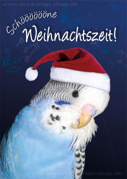 Postkarte Weihnachtskarte Wellensittich 'Schöne Weihnachtszeit'