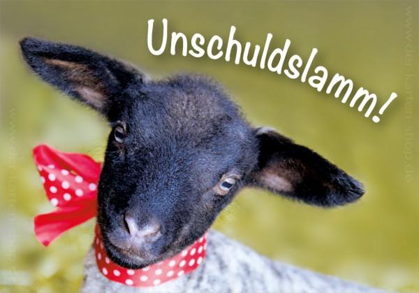 Magnet Kühlschrankmagnet süßes, kleines Schaf 'Unschuldslamm'