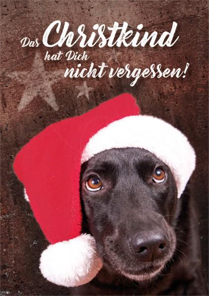 Tierische Weihnachtsgrüße.Doppelkarte Weihnachtskarte Labrador Hund Das Christkind Hat Dich Nicht Vergessen