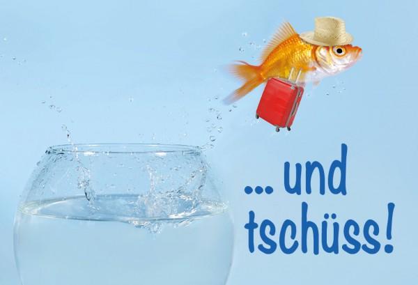 Magnet Kühlschrankmagnet Goldfisch springt aus Glas 'Und tschüss!'