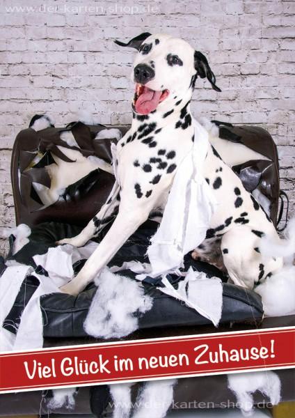 Doppelkarte Grußkarte Glückwunschkarte Dalmatiner 'Viel Glück im neuen Zuhause'