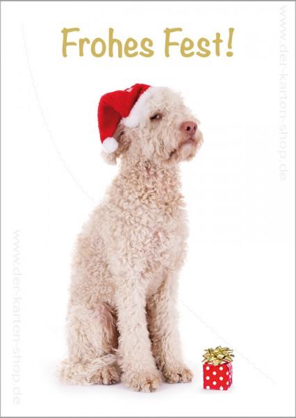 Postkarte Weihnachtskarte Lagotto Hund 'Frohes Fest'