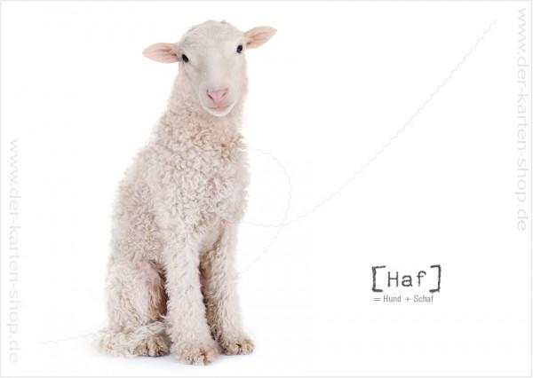 Postkarte Grußkarte Tierischer Mutant Hund – Schaf 'Haf'