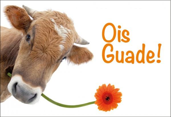 Magnet Kühlschrankmagnet Geburtstag Kuh bayrisch 'Ois Guade'