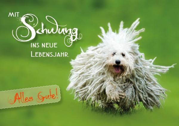 Doppelkarte Geburtstagskarte Puli Hund Mit Schwung Ins Neue