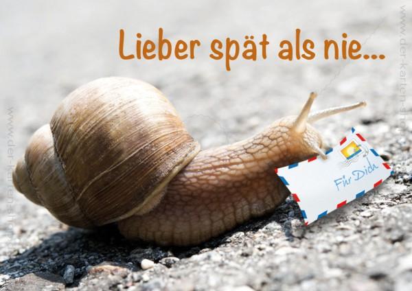 Doppelkarte Geburtstagskarte Geburtstag Vergessen Schnecke Mit Brief