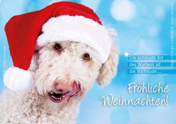 Doppelkarte Weihnachtskarte süßer Hund mit Nikolausmütze 'Fröhliche Weihnachten'
