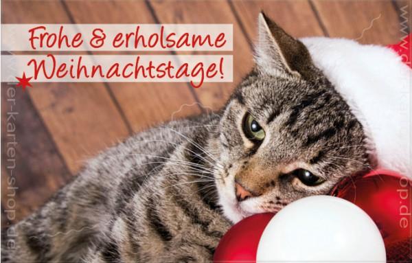 Minikarte Weihnachtskarte süße Katze 'Frohe & erholsame Weihnachtstage'