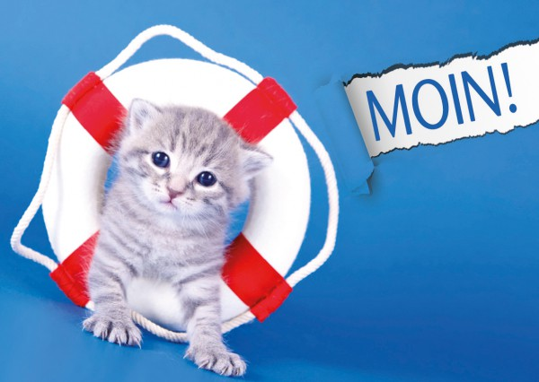 Postkarte Grußkarte Baby Kätzchen mit Schwimmreifen 'Moin'