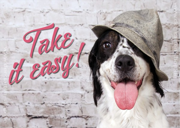 Postkarte Grußkarte netter Hund mit Schlapphut 'Take it easy'