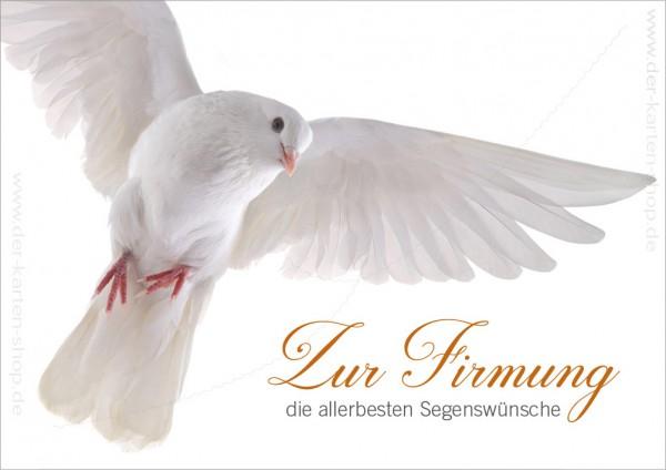 Doppelkarte Glückwunschkarte weiße Taube 'Zur Firmung die allerbesten Segenswünsche