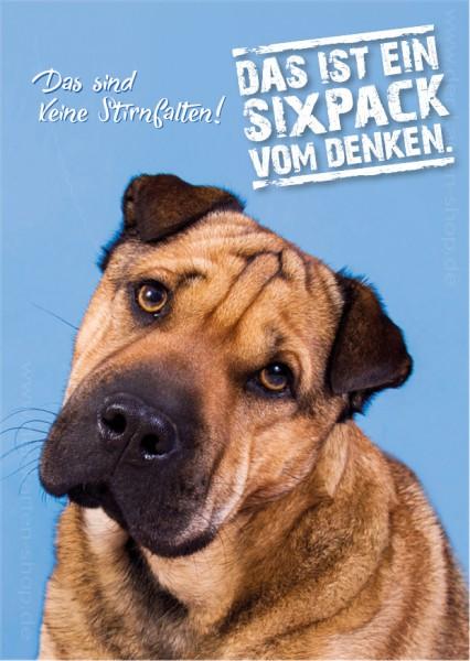 Postkarte Grußkarte Faltenhund 'das sind keine Stirnfalten, das ist ein Sixpack vom Denken!'