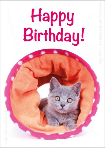 Postkarte Geburtstagskarte süße Katze 'Happy Birthday'