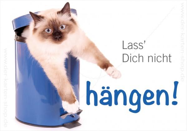 Magnet Kühlschrankmagnet Katze im Eimer 'Lass Dich nicht hängen'