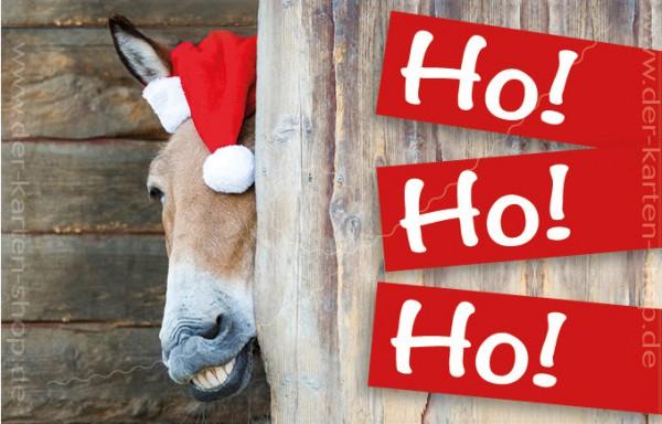 Minikarte Weihnachtskarte witziger Esel Pferd mit Nikolausmütze 'Ho Ho Ho'