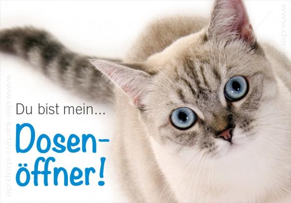 Magnet Kühlschrankmagnet witzige Katze 'Du bist mein Dosenöffner!'