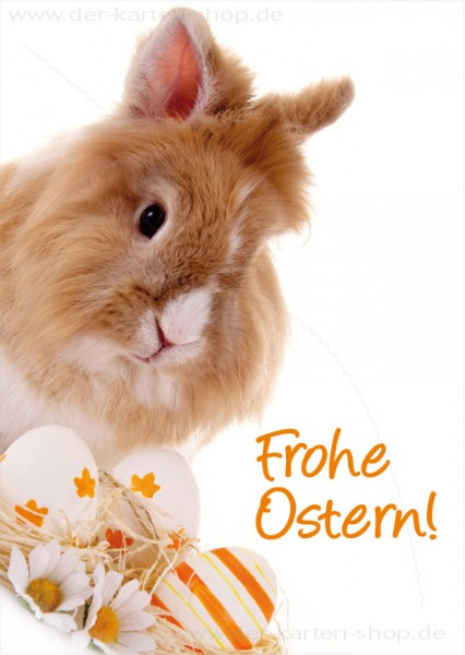 Postkarte Grußkarte Osterkarte süßes Kaninchen 'Frohe Ostern'