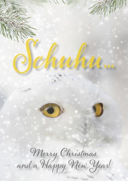 Doppelkarte Weihnachtskarte weiße Eule Schneeeule Schuhe