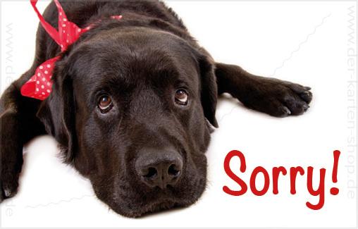 minikarte gl ckwunschkarte entschuldigungskarte s er labrador hund 39 sorry 39 minikarten. Black Bedroom Furniture Sets. Home Design Ideas