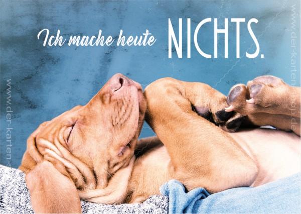 Postkarte Grußkarte schlafender Hund 'Ich mache heute NICHTS!'