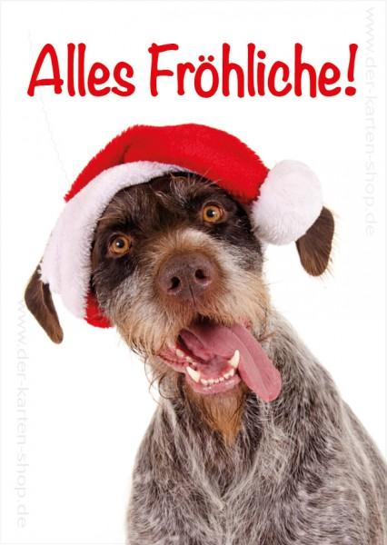 Postkarte Weihnachtskarte witziger Jagdhund 'Alles Fröhliche'