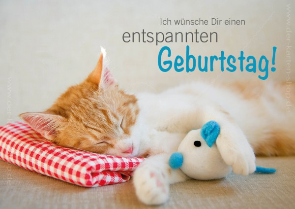 Doppelkarte Geburtstagskarte schlafende Katze 'Ich wünsche Dir einen entspannten Geburtstag'