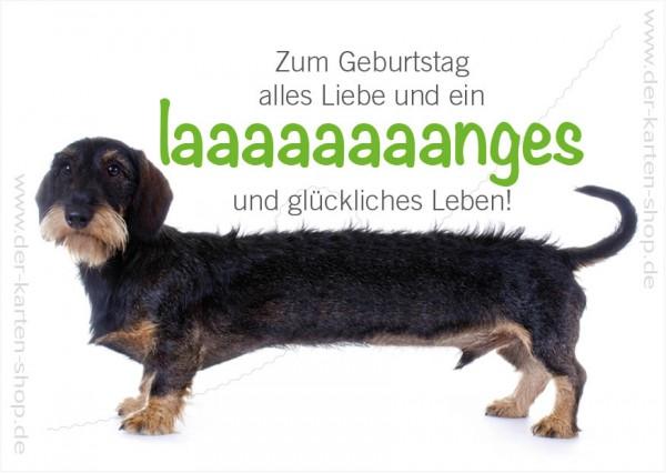 Postkarte Geburtstagskarte langer Dackel Zum Geburtstag alles Liebe...