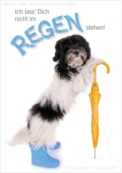Postkarte Grußkarte süßer Hund mit Regenschirm 'Ich lass Dich nicht im Regen stehen!'