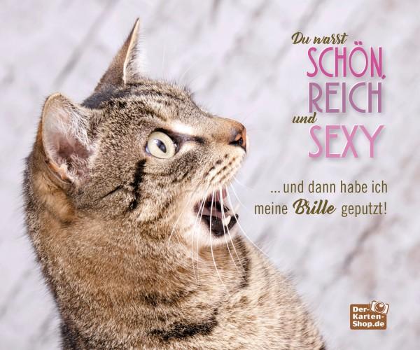 Brillenputztuch Katzenmotiv 'Du warst schön, reich und sexy'