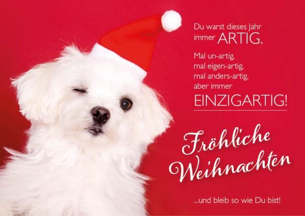 """Doppelkarte Weihnachtskarte Malteser Hund """"Du bist einzigartig"""""""