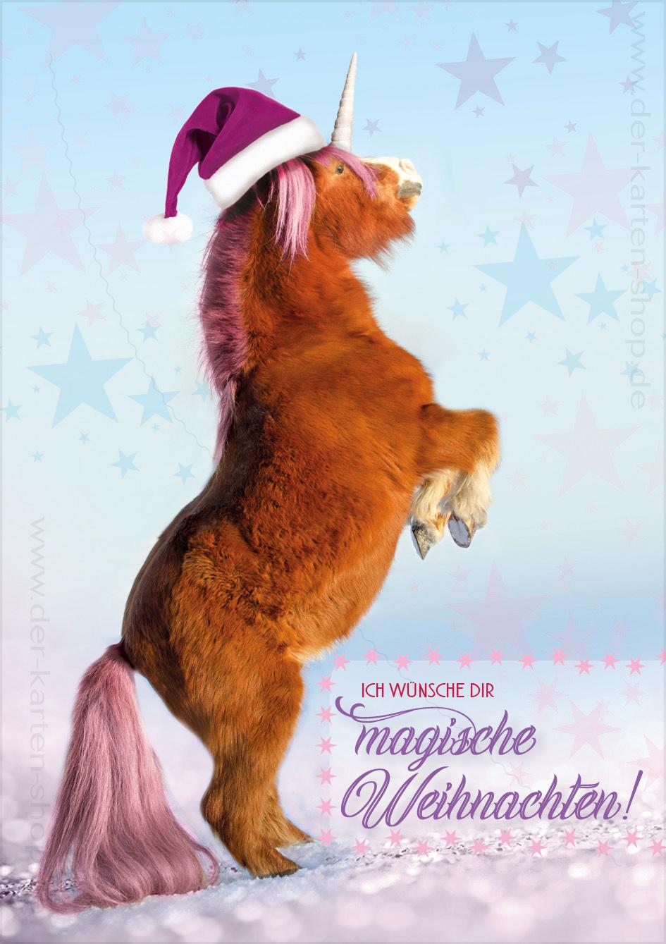 doppelkarte weihnachtskarte einhorn pony 39 ich w nsche dir. Black Bedroom Furniture Sets. Home Design Ideas