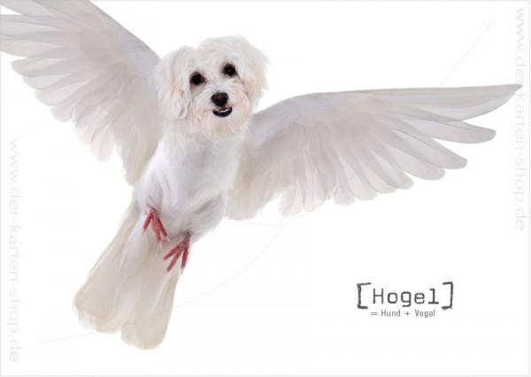 Postkarte Grußkarte Tierischer Mutant Vogel – Hund 'Hogel'