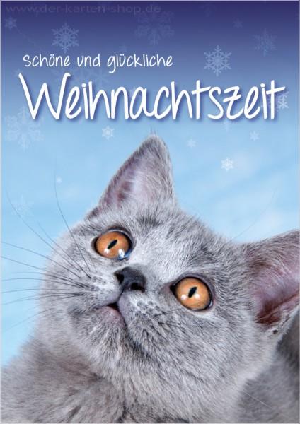 Doppelkarte Weihnachtskarte süßes Kätzchen 'Schöne und glückliche Weihnachtszeit'