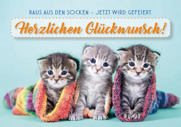 """Doppelkarte Geburtstagskarte kleine Katzenbabys 'Raus aus den Socken, jetzt wird gefeiert!"""""""