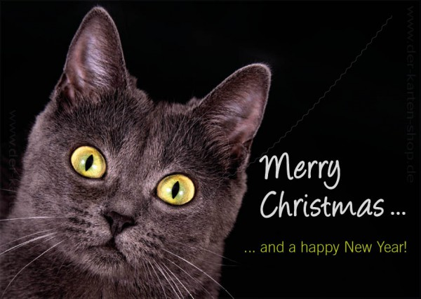Postkarte Weihnachtskarte schwarze Katze 'Merry christmas and a happy new year'