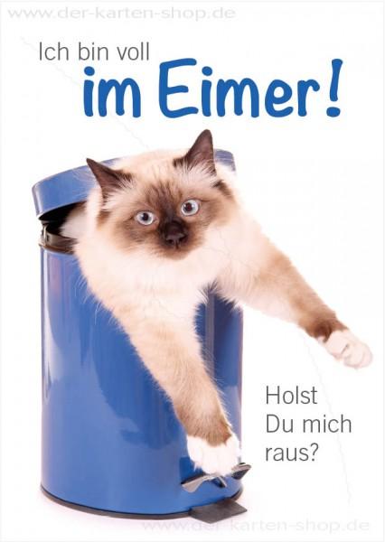 Postkarte Grußkarte witzige Katze hängt im Mülleimer 'Ich bin voll im Eimer – holst Du mich raus?